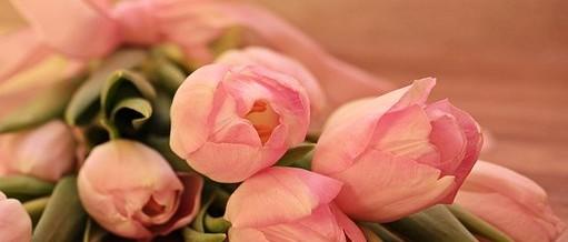 19 octubre, día mundial del cáncer de mama