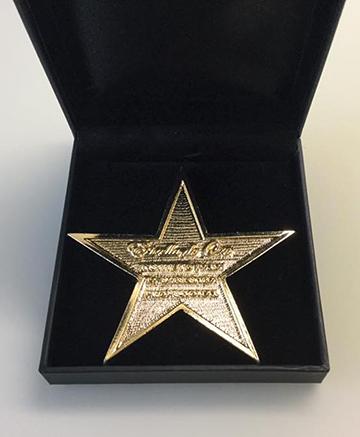 Estrella de Oro al Mérito Profesional